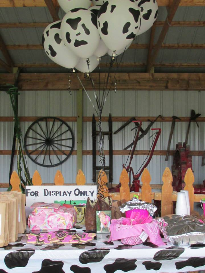 Farm themed birthday party