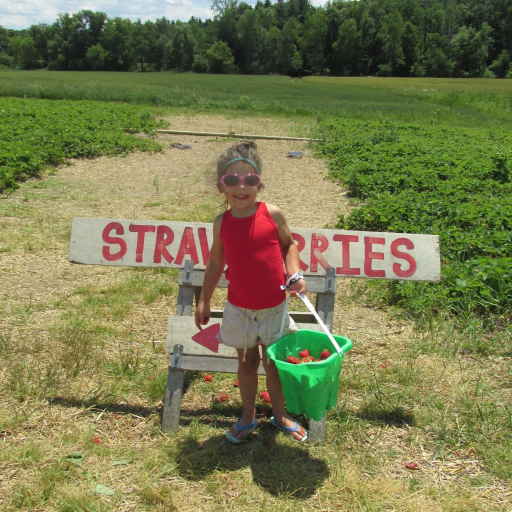 Soul Soothing Strawberry Fields Forever/How Picking Strawberries Picked Up My Summer Spirits