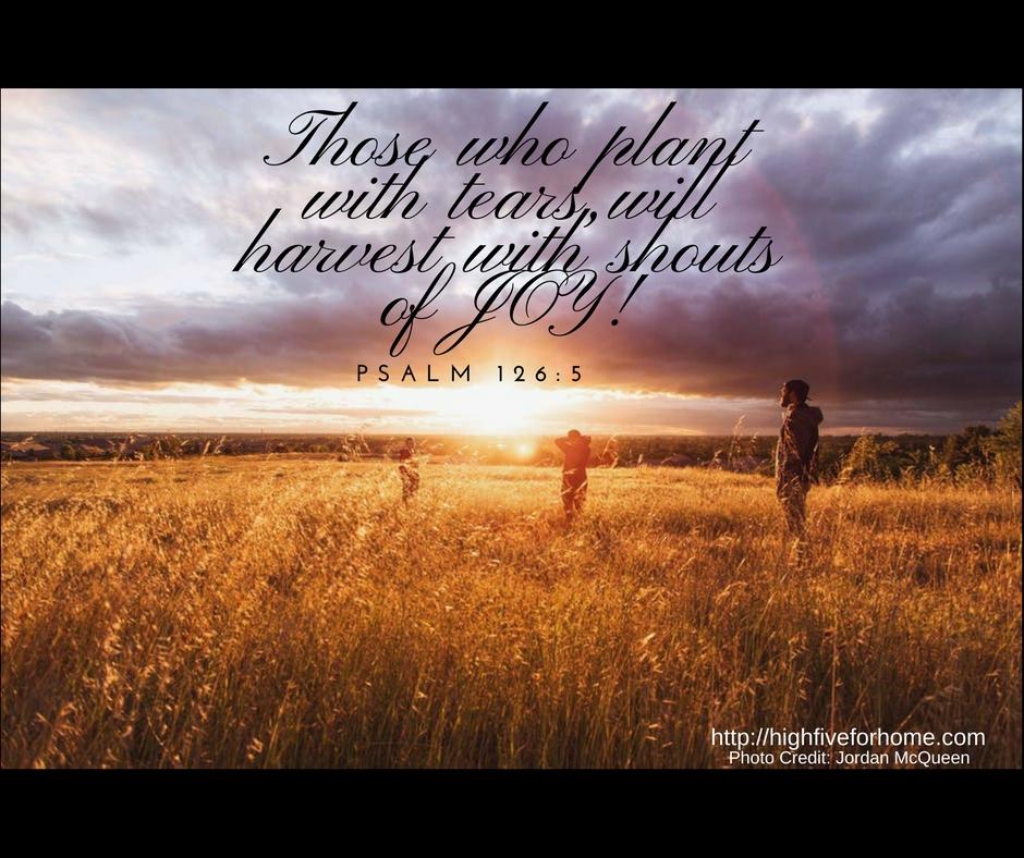Psalm 126 joy harvest